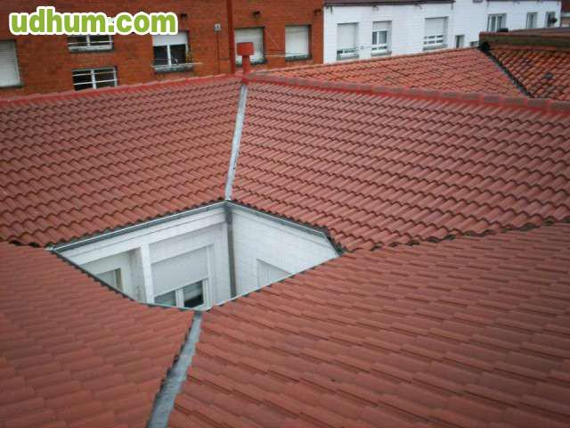 Especialista en tejados 2 - Cubiertas vegetales para tejados ...