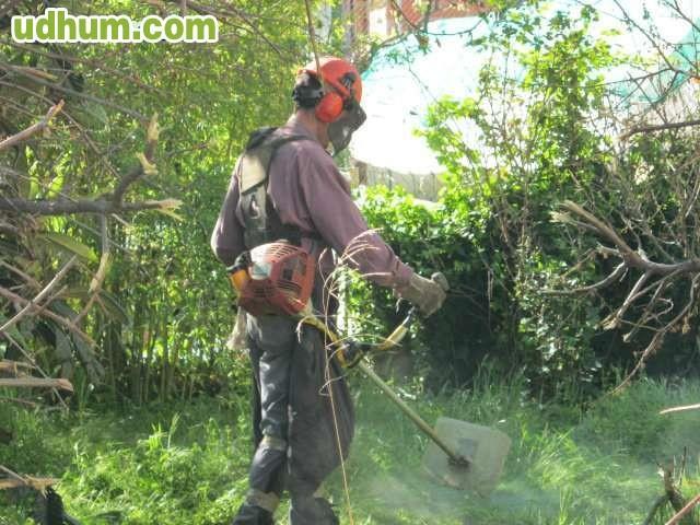 Limpieza d propiedades ferran - Trabajos de limpieza en casas particulares ...