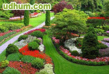 Jardinera profesional 4 Trabajo jardinero girona