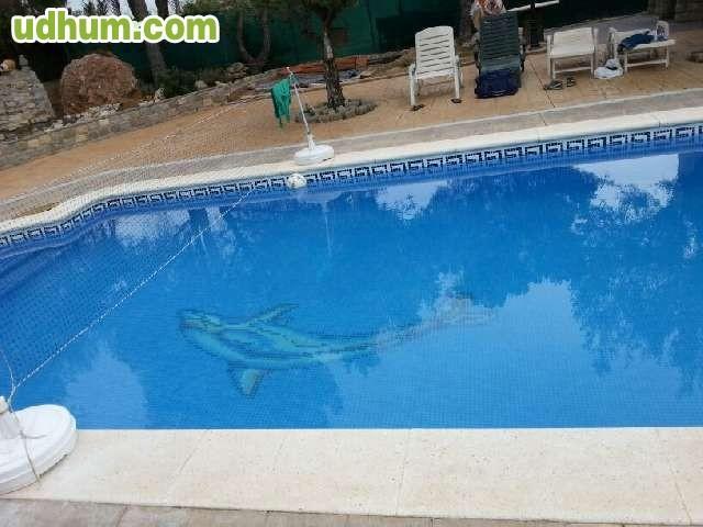 Productos para la piscina for Productos para piscinas