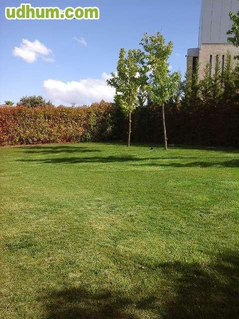 Jardinero 24 - Precio hora jardinero ...