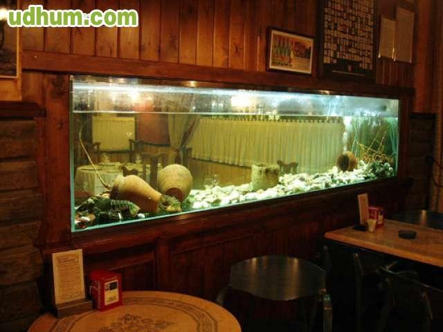 Limpieza y mantenimiento acuario pecera for Acuario valencia precio
