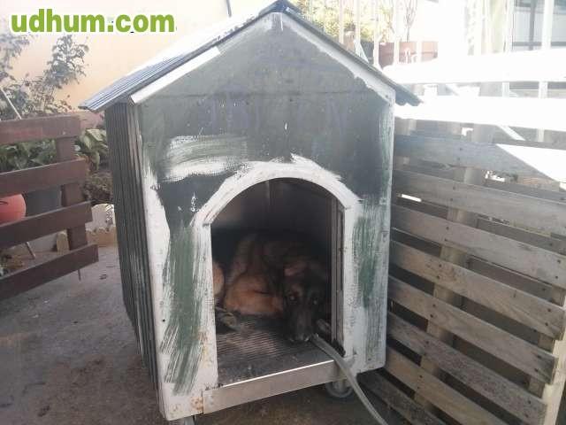 Casa para perro 5 for Vendo caseta metalica