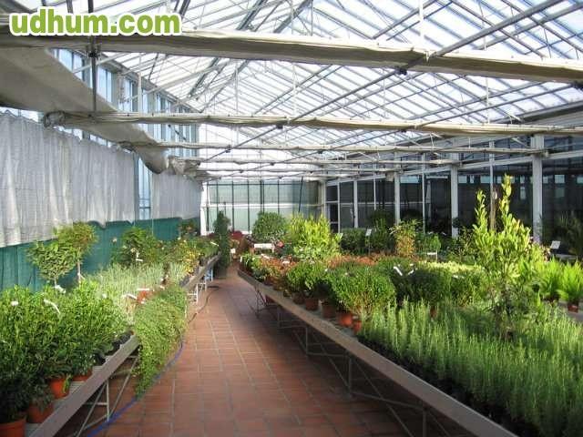 Agro jardin merino s a 4 for Piscinas merino