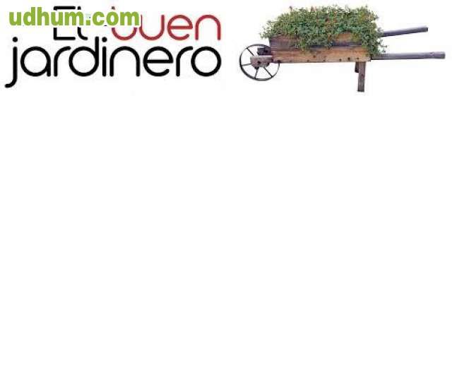 Jardinero profesional busca empleo 1 for Trabajo jardinero