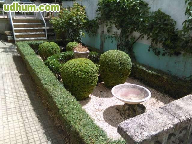 Jardinero profesional 14 - Trabajo jardinero madrid ...