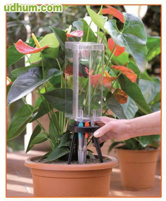 Kit riego goteo para planta en maceta - Riego por goteo para macetas ...
