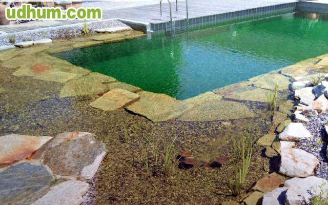 piscinas naturales biofiltro biopiscinas