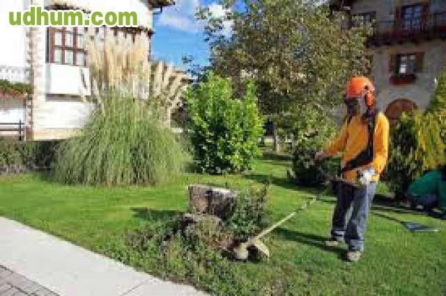 Jardineros Y Mantenimiento Alicante