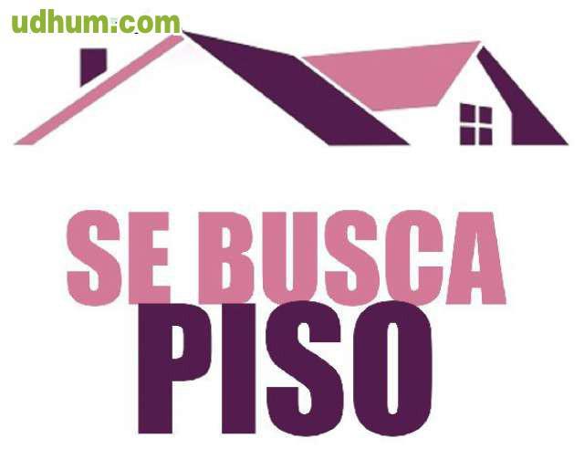 Se buscan pisos de alquiler 1 for Pisos alquiler villarcayo