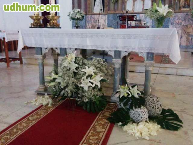 Alquiler de alfombra roja para tu boda - Alquiler alfombras ...