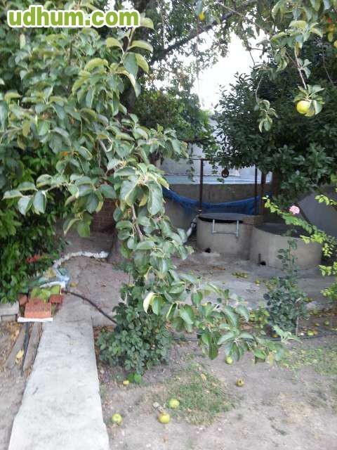 Calle petunia for Vendo estanque agua