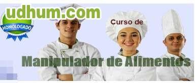 Carnet manipulador de alimentos 4 - Carnet de manipulador de alimentos homologado ...