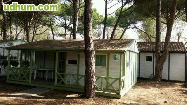 Casa canexel prefabricada de 39 m2 verde - Casas prefabricadas canexel ...