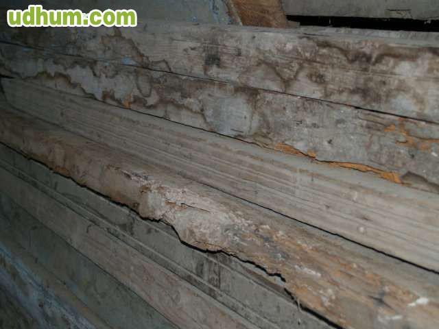 Vigas de madera antiguas 2 - Vigas de madera antiguas ...