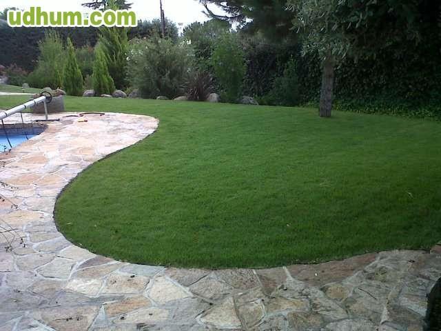 Limpieza plancha y jardineria 1 for Jardineria las rozas
