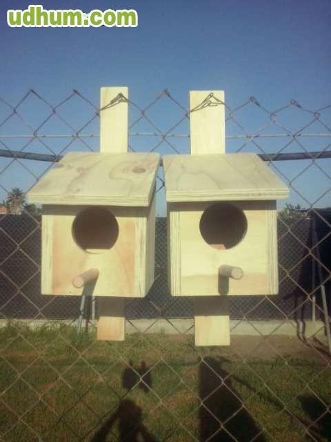 Caseta de pajaros for Vendo caseta resina