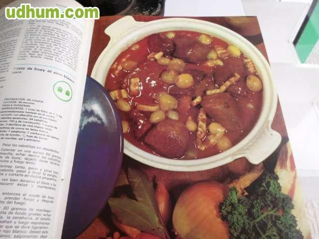 Enciclopedia salvat de cocina for Enciclopedia de cocina pdf