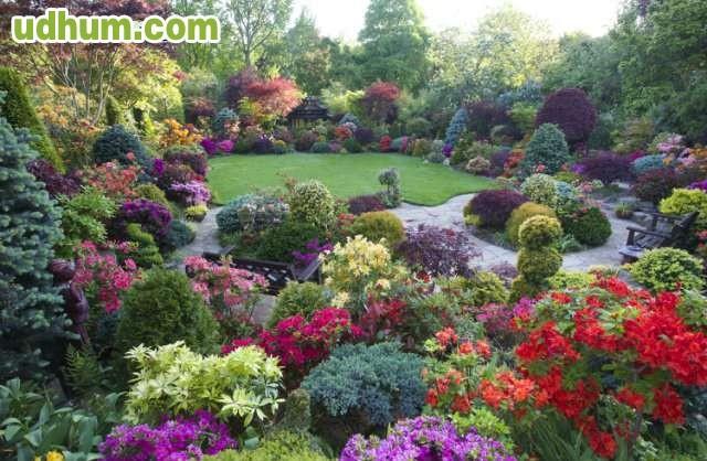 Busco trabajo jardinero en madrid for Busco jardinero