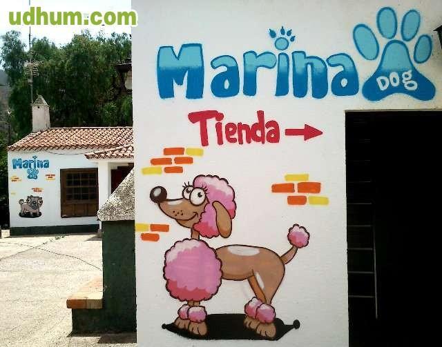 Graffiti tenerife decoracion canarias - Decoracion tenerife ...