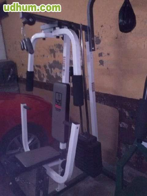 Maquina de gimnasio musculacion for Gimnasio musculacion