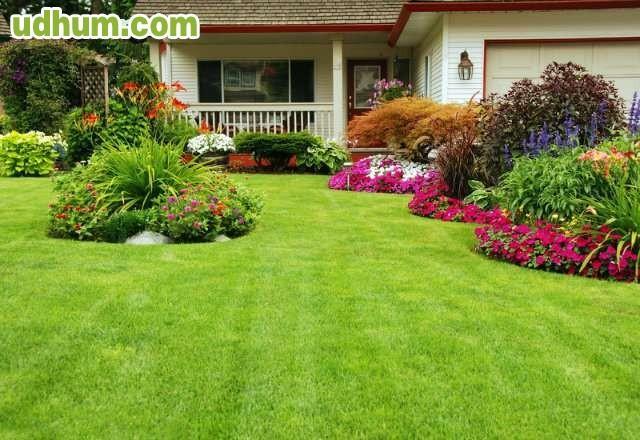 Servicio de jardineria y mantenimiento for Servicio de jardineria