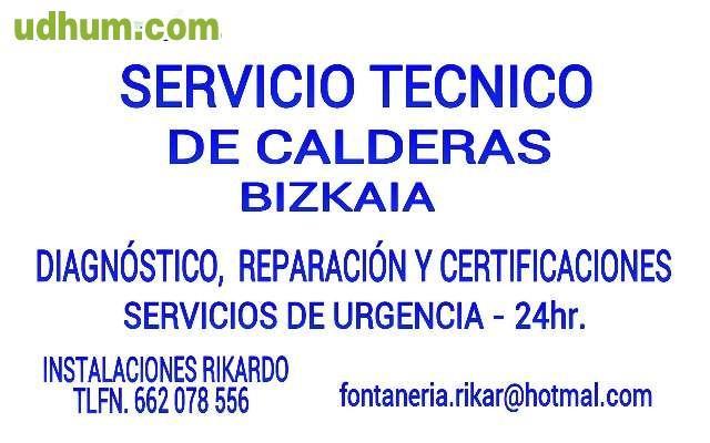 Servicio t cnico calderas bizkaia for Servicio tecnico calderas valencia