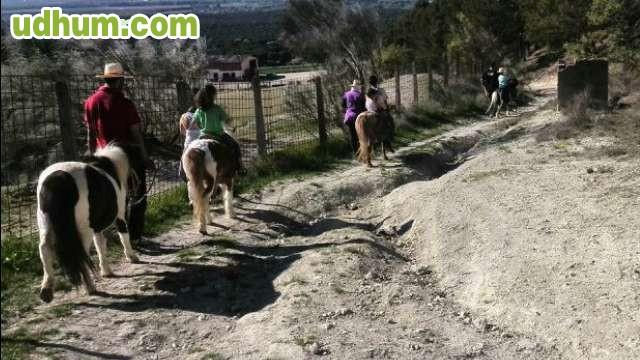 Paseos en ponys o burro desde 10 euros - Casa rural urduliz ...
