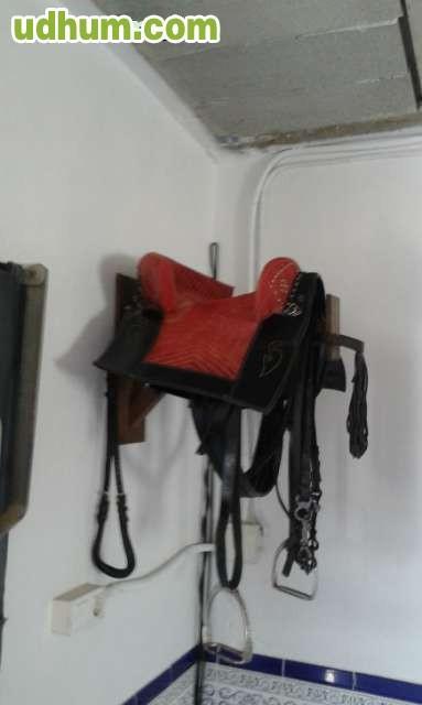 Monturas para pony - Sillas de ruedas para perros baratas ...