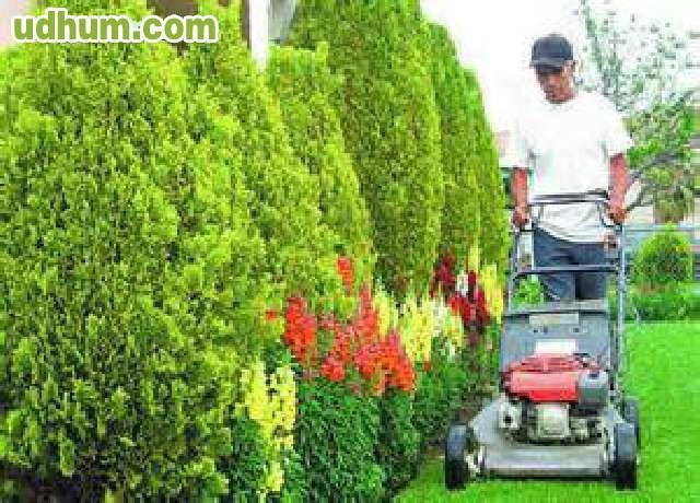 Jardinero 234 for Busco jardinero