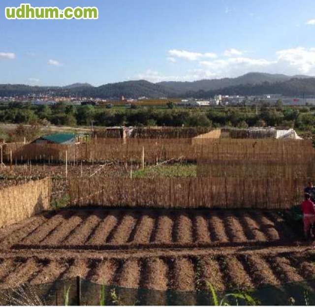 Jardinero agricultor 2 for Trabajo jardinero barcelona
