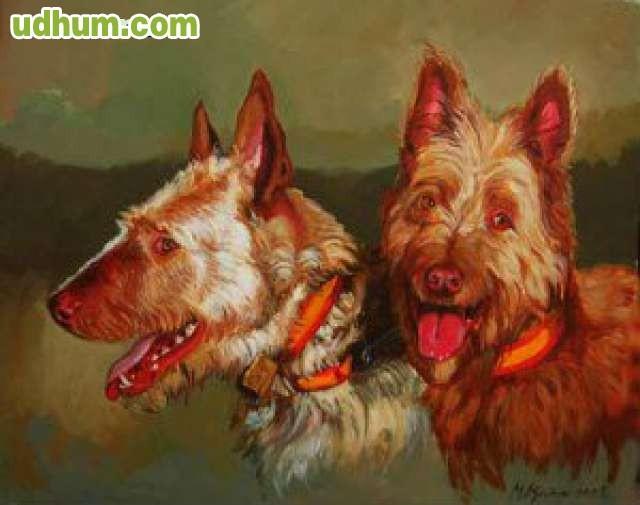 Ofert n pienso perros de caza 7 95 - Pienso para perros de caza ...