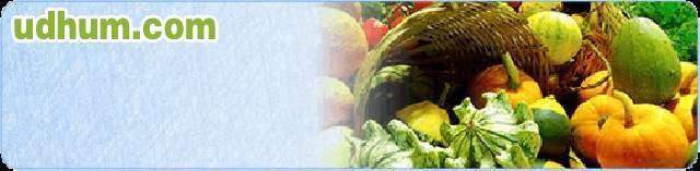 Curso manipulador alimentos distancia - Carnet de manipulador de alimentos homologado ...