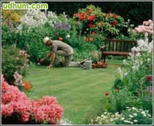 Cuidado y mantenimiento de jardines 1 for Trabajo de mantenimiento de jardines