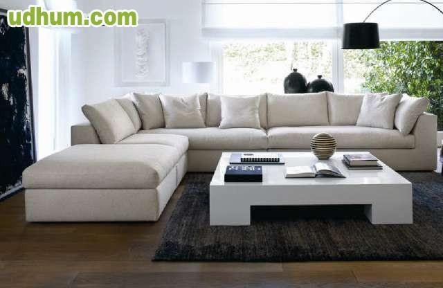 Limpieza profesional alfombras sofas for Limpieza de sofas