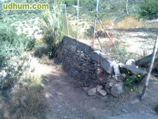 Tarifa plana 5 m2 valla met lica 1 for Jardineria barata barcelona