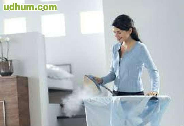 Limpieza y planchado 1 - Limpieza en seco en casa ...