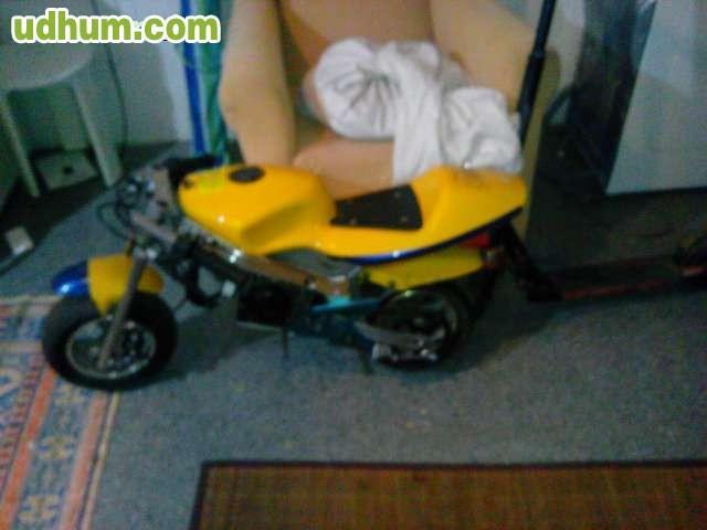 Vendo minimoto competicion - 0177 numero telephone ...