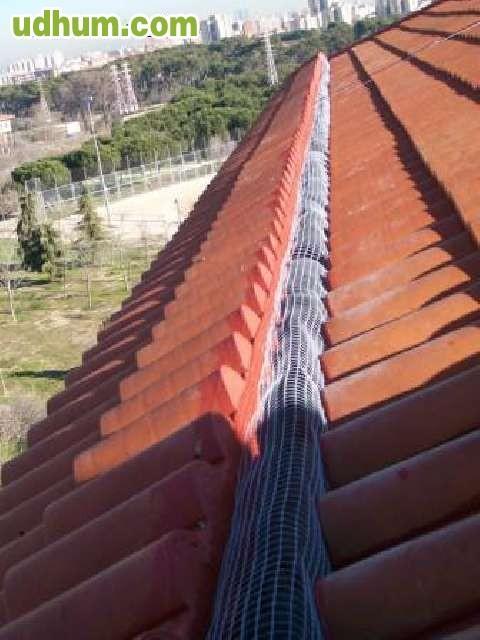 Tejados punto galicia for Tejados galicia