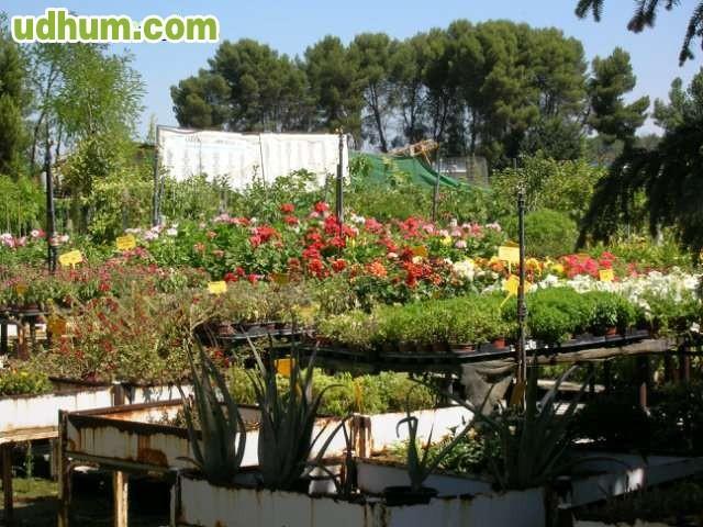 Centro de jardiner a liquida existencias for Centro de jardineria