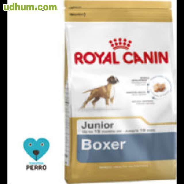 Pienso para perro boxer junior 12 kg - Pienso para perros de caza ...