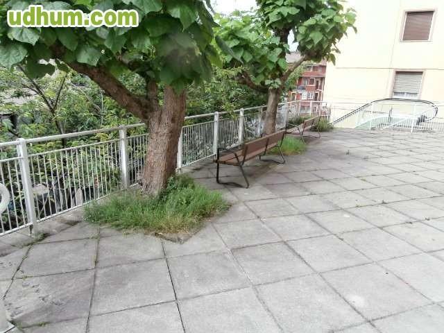 Empresa de jardineria seria y de calidad for Empresas de jardineria