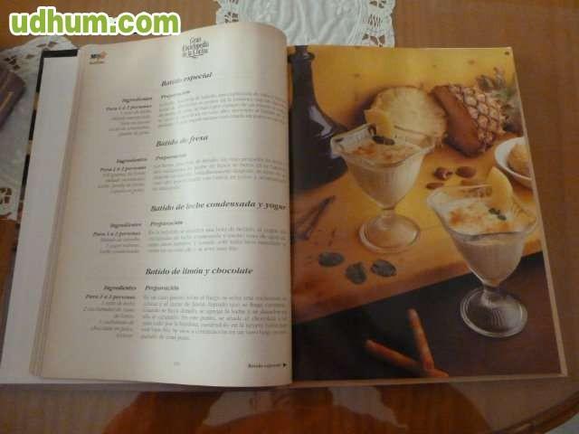 Gran enciclopedia de la cocina 5 tomos for Enciclopedia de cocina pdf