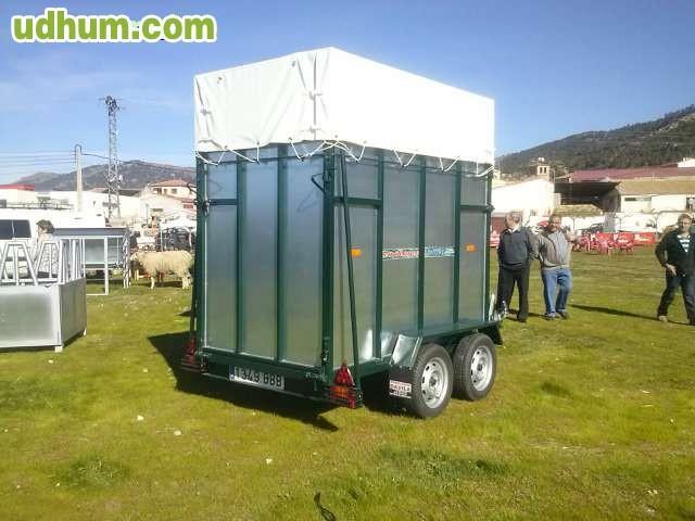 Van de caballos 4 2 for Gimnasio 88 torreones avila