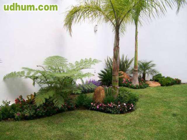 Jardinero 625 - Precio hora jardinero ...