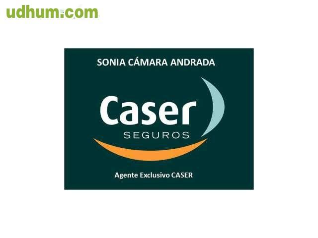 Caser orihuela busca agentes comerciales for Oficinas caser